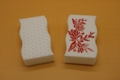 magic eraser sponge with printings