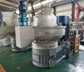 China wood pellet machine