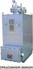 供應CPEX電熱式瓦斯氣化爐