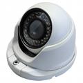 Star-light 1.3MP 1280*960 Whelk IP