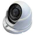 Star-light 1.3MP 1280*960 Whelk IP Camera HEB Series