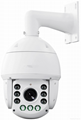 IP speed dome  2mp