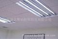 低壓AC/DC12V24V36V LED日光燈 3