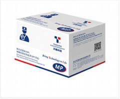 肺炎支原体(MP)核酸检测试剂盒(荧光PCR法)