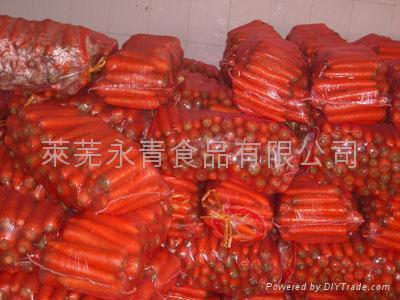 胡蘿蔔 4