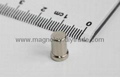 N30-N55釹鐵硼磁鐵