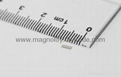 Neodymium iron boron (NdFeb) magnet