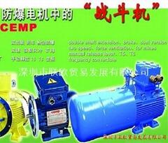 供應進口單相防爆電機CEMP