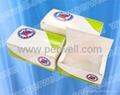 Chicken box BJ-Q175