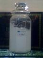 弹力水份美白乳液加工半成品散装