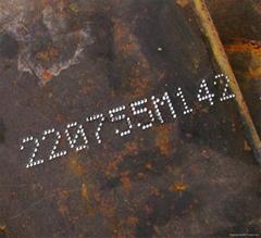 汕頭俊國機電科技SNP取樣板針印沖印鋼印機