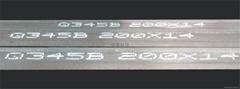 汕头俊国机电科技XPM型钢喷印喷号喷码机