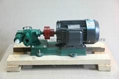齿轮泵 不锈钢齿轮泵
