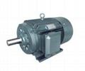 CXT系列高起動轉矩高效永磁同步電動機 1
