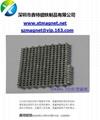 china  magnet 4