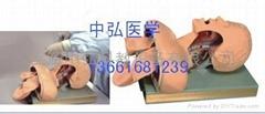 成人气管插管演示模型,气管插管模型