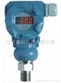 DBS308压力变送器 3