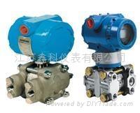 DBS308压力变送器 4