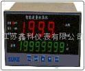 流量积算仪数字显示仪