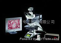 全自動金相顯微鏡