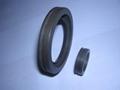 QuanSeal™ WL series PTFE lip-rotary