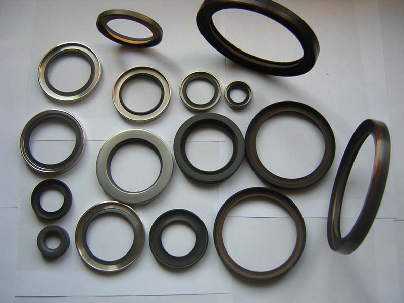 Rotary shaft seals with PTFE seals lips 1