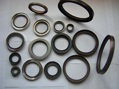 Rotary shaft seals with PTFE seals lips