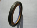 QuanSeal™  DL series PTFE lip-rotary shaft seal