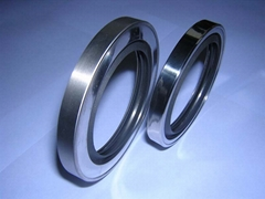 QuanSeal™  DLS series PTFE lip-rotary shaft seal