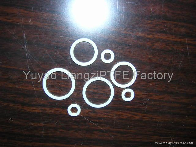 QuanSeal™ PTFE O-Ring 1