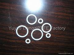 QuanSeal™ PTFE O-Ring