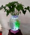 水培花卉陶瓷花瓶