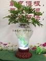 电子水培花瓶