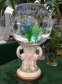 灯光氧气水培花卉花瓶 3