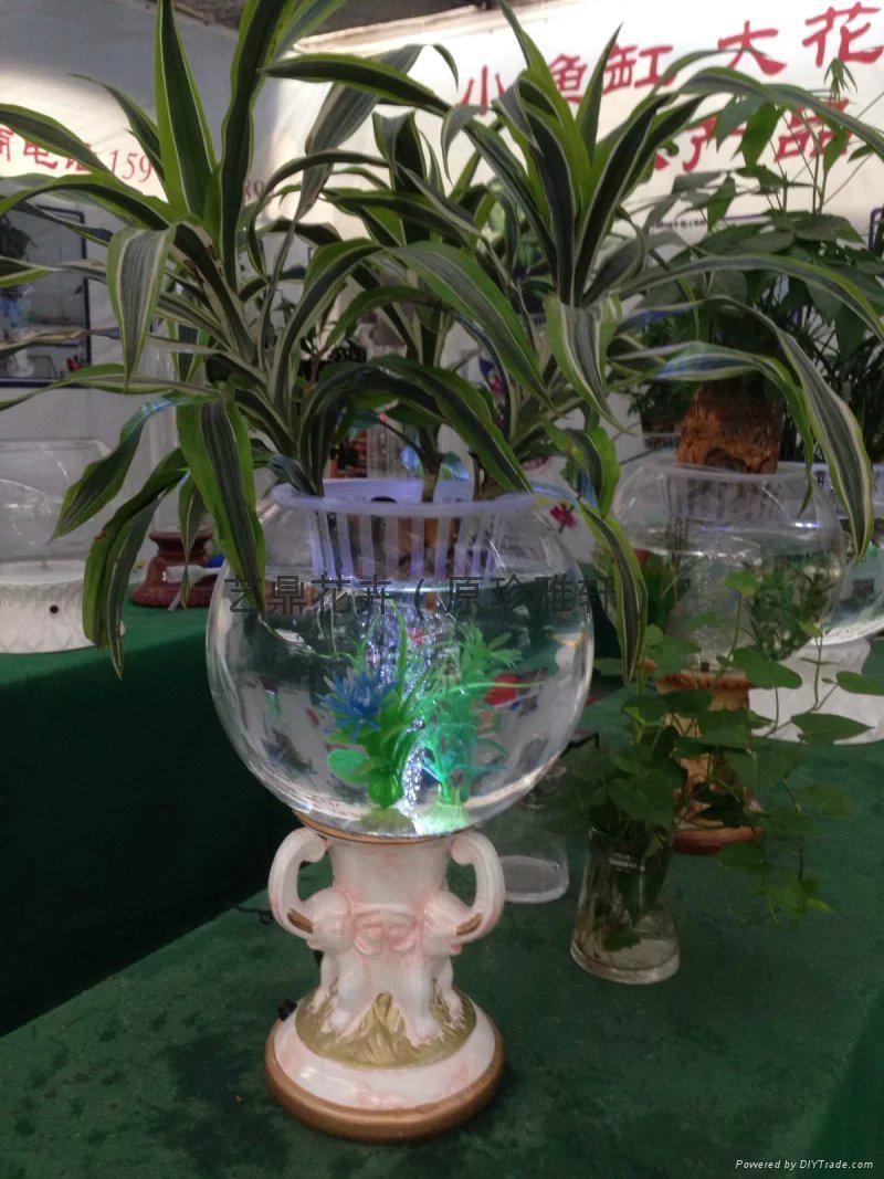 灯光氧气水培花卉花瓶 4