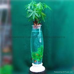 充氧灯光玻璃花瓶