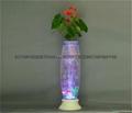 無土栽培花卉燈光氧氣水培玻璃花瓶 2