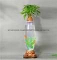 無土栽培花卉燈光氧氣水培玻璃花瓶 3