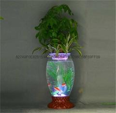 水培花卉花盆