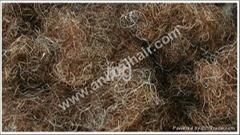 Curled Horse hair