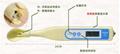 ZDST-212鹽度-溫度計檢測儀 3