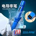 ZDS-PPM全防水型筆式檢測