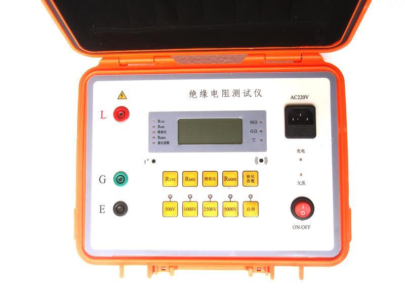 智能双显绝缘电阻测试仪 3