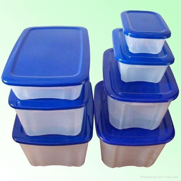 Plastic Crisper Box Mould 1