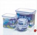 Plastic Crisper Box Mould 3
