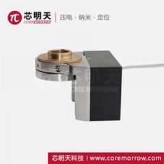 壓電物鏡定位器