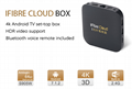 2020 latest Singapore Fibre tv box iFibre Cloud EPL all Starhub tv channels  15