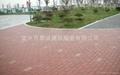 地面磚  4