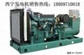 400KW沃尔沃柴油发电机组 1