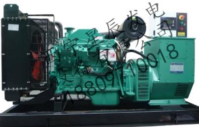 250KW康明斯柴油发电机组 1